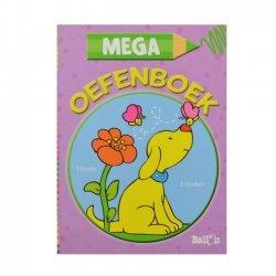 Mega Oefenboek 5+