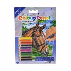 Kleuren op Nummer CPNMIN101 - 127 x 178 mm. Paard