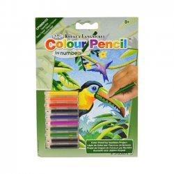 Kleuren op Nummer CPNMIN103 - 127 x 178 mm. Tropische Vogels