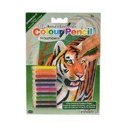 Kleuren op Nummer CPNMIN104 - 127 x 178 mm. Jungle Tijger