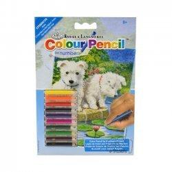 Kleuren op Nummer CPNMIN108 - 127 x 178 mm. Witte Terriers