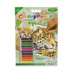 Kleuren op Nummer CPNMIN110 - 127 x 178 mm. Jaguars