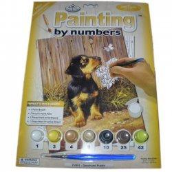 Schilderen op Nummer  PJS51 Puppy Teckel  22x29 cm.