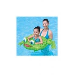 Zwemring Kikker
